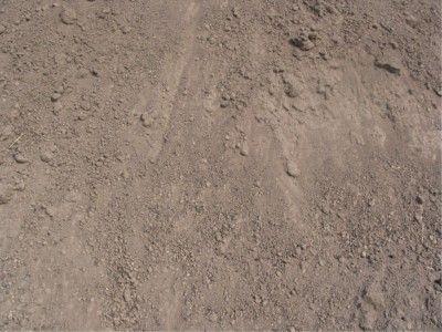 Field Run Topsoil