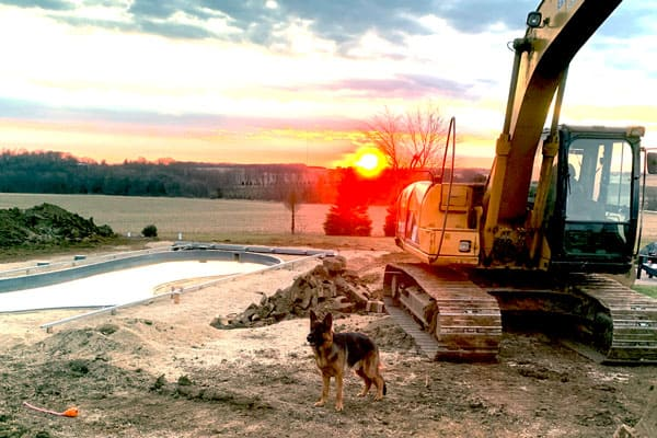 Brinkmann dog, ready to start working with a beautiful sunset.
